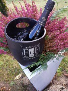 IMG 20171111 WA0003 225x300 - Giornata Champagne