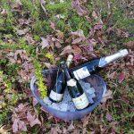 giornata champagne lanterna rossa ristoramte pesce cadeo piacenza 150x150 - 14 ottobre Giornata Bollicine Champagne