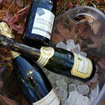 giornata champagne lanterna rossa ristoramte pesce cadeo piacenza 4 150x150 - 14 ottobre Giornata Bollicine Champagne